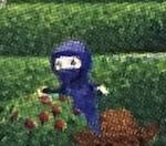Adventure Ninja Hiding